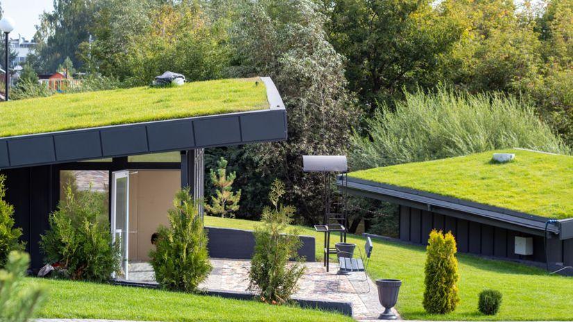 zelená strecha, ekológia, ekobývanie