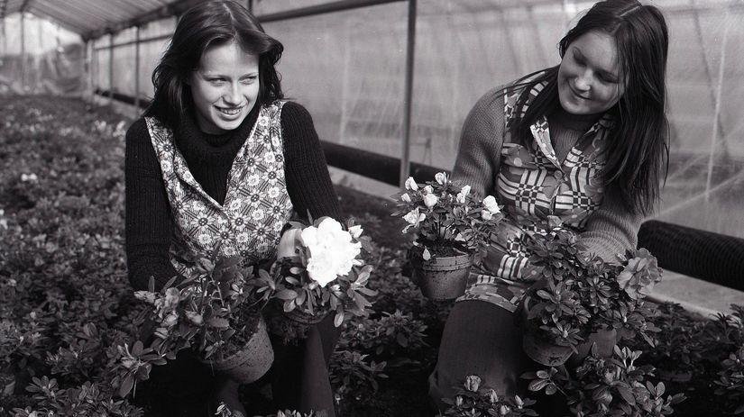 MDŽ, deň žien, kvety, darček