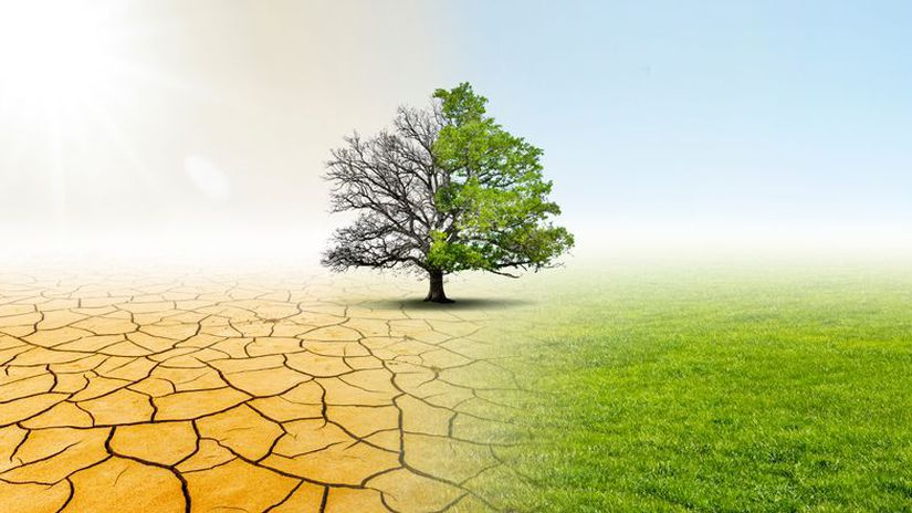 Drought and Green Nature  Landscape