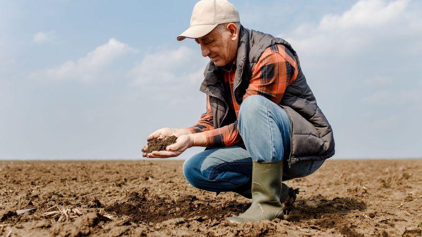 senior, farmár, pracujúci penzisti, pole, pôda,...
