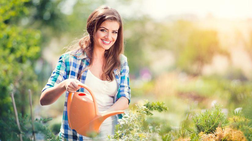žena, krhla, záhrada, polievanie