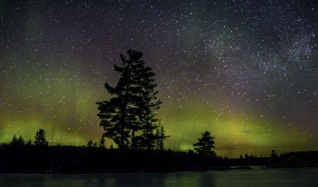 Kanada, les, aurora borealis, polárna žiara, noc, hviezdy, stromy,