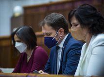 Ministerka Kolíková hlasovanie o dôvere ustála, matovičovci ju nepodržali
