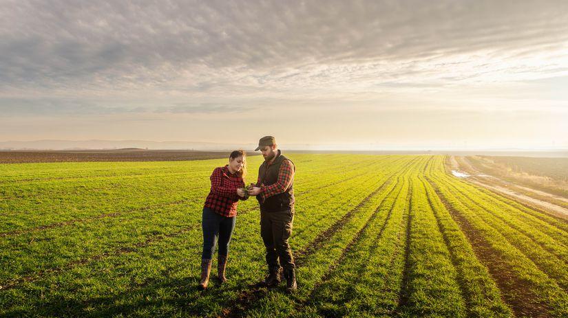 pole, pôda, predaj, dohoda