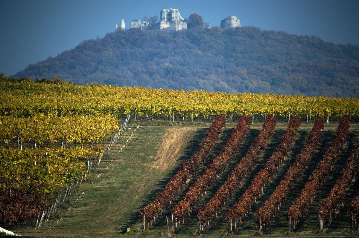 Víno robí krajinu krajšou.
