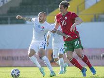 Slovensko - Bulharsko