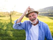 muž, práca, pole, oddych, senior, pracujúci penzisti