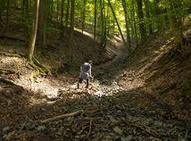 lesná cesta, Rudno nad Hronom