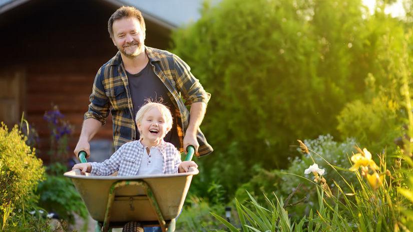 Happy little boy having fun in a wheelbarrow...