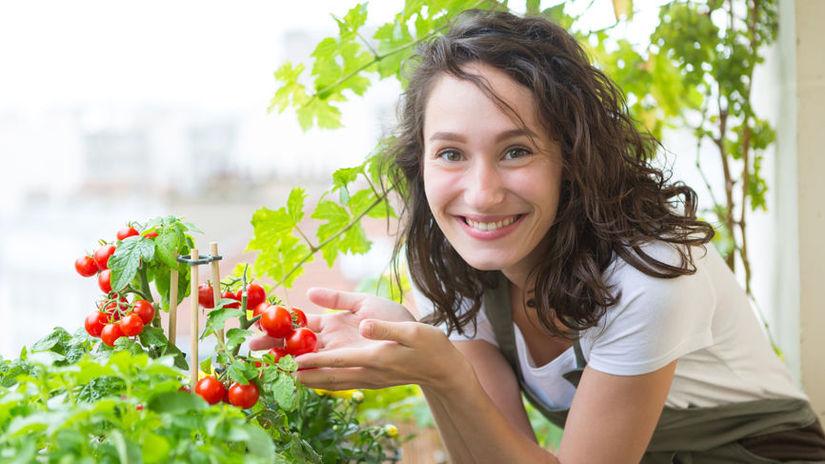 V júli hnojíme zeleninu aj izbové rastliny
