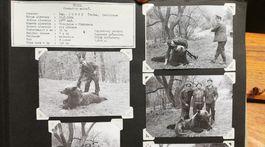 album, medvede, Rudolf Stejskal