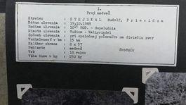medvede, album, detail, Stejskal