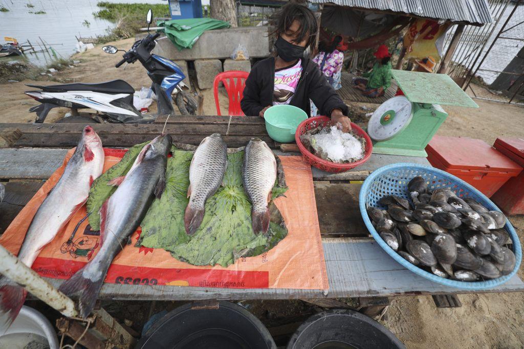 Kambodža, trh, ryby, predaj
