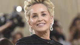 najlepšie líčenie, MET Gala, Sharon Stone
