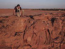 Camel Site