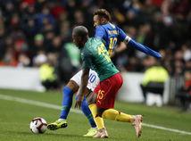Großbritannien Fußball Brasilien Kamerun Fuchs