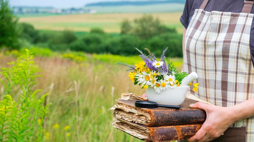 bylinky, bylina, liečivé rastliny, žena, lúka