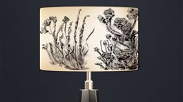 Elaine Collins  Meadow Muse  Organic Lampshade in White