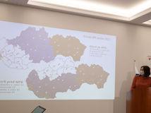Kolíková súdna mapa